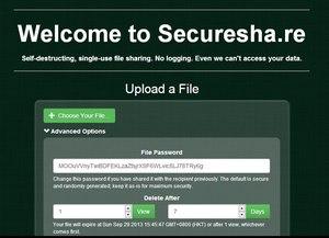 securesha.re x 300