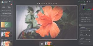 Polarr - editor de fotos con filtros y efectos predefinidos